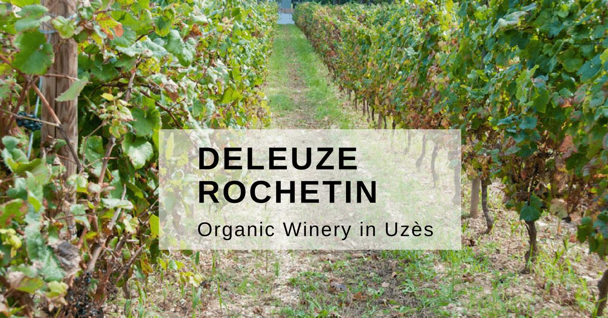 organic Winery